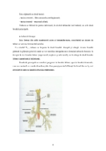 xfs 150x250 s100 page0007 0 Ingrijirea pacientului cu pneumonie