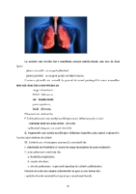 xfs 150x250 s100 page0009 0 Ingrijirea pacientului cu pneumonie