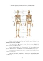 xfs 150x250 s100 page0006 0 Ingrijirea pacientului cu artrita