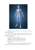 xfs 150x250 s100 page0008 0 Ingrijirea pacientului cu artrita