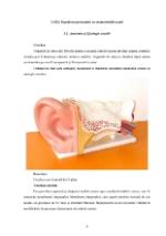 xfs 150x250 s100 page0003 0 Ingrijirea pacientului cu otomastoidita acuta