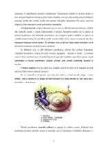xfs 150x250 s100 page0005 0 Ingrijirea pacientului cu otomastoidita acuta