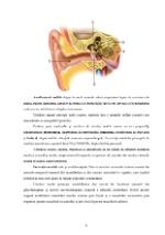 xfs 150x250 s100 page0007 0 Ingrijirea pacientului cu otomastoidita acuta