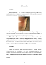 xfs 150x250 s100 page0014 0 Ingrijirea pacientului cu otomastoidita acuta