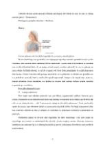 xfs 150x250 s100 page0007 0 Ingrijirea pacientului varstnic cu bronsita cronica