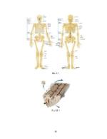 xfs 150x250 s100 REUMATISMUL ARTICULAR ACUT 41 0 Ingrijirea copilului cu reumatism articular acut