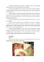 xfs 150x250 s100 page0009 0 Ingrijirea pacientului cu alergii