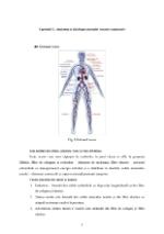xfs 150x250 s100 page0003 0 Ingrijirea pacientului cu hemoroizi