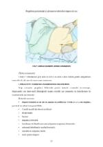 xfs 150x250 s100 page0023 0 Ingrijirea pacientului cu hemoroizi