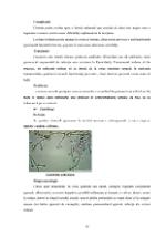 xfs 150x250 s100 page0015 0 Ingrijirea pacientilor cu boli venerice