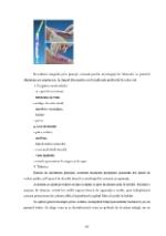 xfs 150x250 s100 page0059 0 Ingrijirea pacientilor cu boli venerice