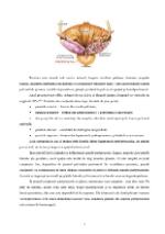 xfs 150x250 s100 page0006 0 Ingrijirea pacientului cu adenom de prostata