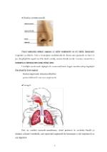 xfs 150x250 s100 page0004 0 Ingrijirea pacientului cu hemoptizie
