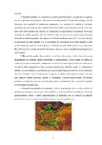 xfs 150x250 s100 page0009 0 Ingrijirea pacientului cu ulcer gastroduodenal