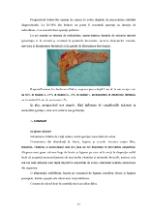 xfs 150x250 s100 page0016 0 Ingrijirea pacientului cu cancer de colon