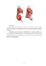 xfs 150x250 s100 page0020 0 Ingrijirea pacientului cu cancer de colon