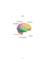 xfs 150x250 s100 page0058 0 Ingrijirea pacientului cu boala Parkinson