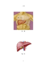 xfs 150x250 s100 page0089 0 Ingrijirea pacientului cu hepatita virala