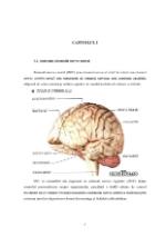 xfs 150x250 s100 page0004 0 Ingrijirea pacientului cu nevroza astenica