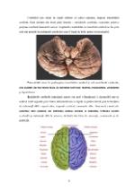 xfs 150x250 s100 page0007 0 Ingrijirea pacientului cu nevroza astenica