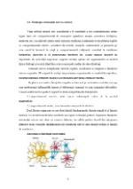 xfs 150x250 s100 page0008 0 Ingrijirea pacientului cu nevroza astenica