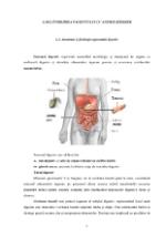 xfs 150x250 s100 page0004 0 Ingrijirea pacientului cu anemie Biermer
