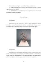 xfs 150x250 s100 page0012 0 Ingrijirea pacientului cu anemie Biermer