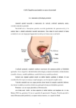 xfs 150x250 s100 page0004 0 Ingrijirea pacientului cu cancer de prostata