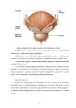 xfs 150x250 s100 page0005 0 Ingrijirea pacientului cu cancer de prostata