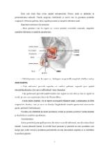 xfs 150x250 s100 page0006 0 Ingrijirea pacientului cu cancer de prostata