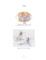 xfs 150x250 s100 page0072 0 Ingrijirea pacientului cu entorsa