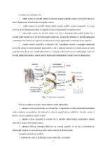 xfs 150x250 s100 page0004 0 Ingrijirea pacientului cu fracturi costale