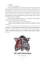 xfs 150x250 s100 page0017 0 Ingrijirea pacientului cu fracturi costale
