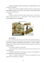xfs 150x250 s100 page0021 0 Ingrijirea pacientului cu osteosarcom