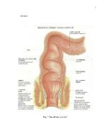 xfs 150x250 s100 page0001 14 Ingrijirea pacientului cu abces perianal